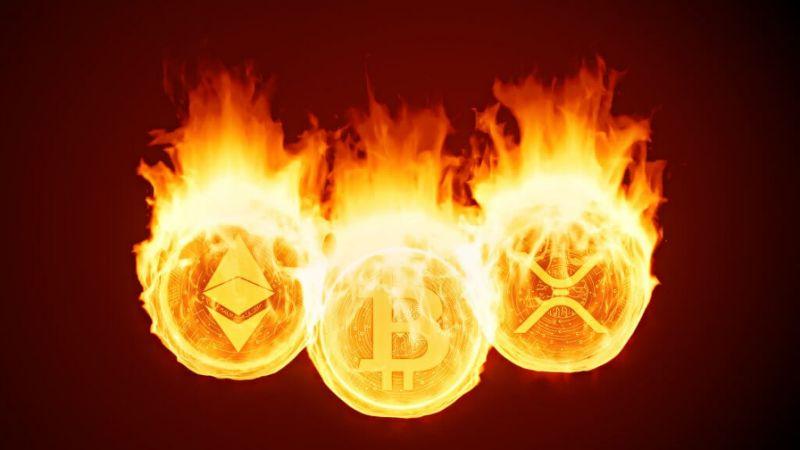 اثبات سوزاندن (PoB)